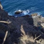 小樽市祝津の高島岬の断崖